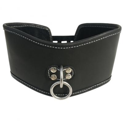 - Sportsheets - Edge Soft Leather Posture Collar
